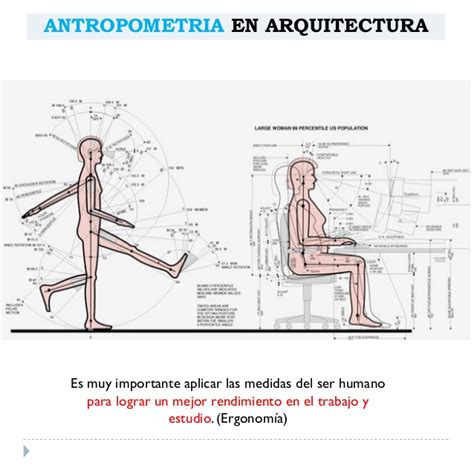 Disenar Interiores antropometria arquitect 243 nica