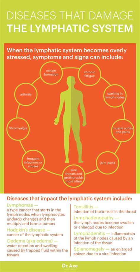 Pulling Detox Symptoms by Best 25 Lymphatic System Ideas On Detox