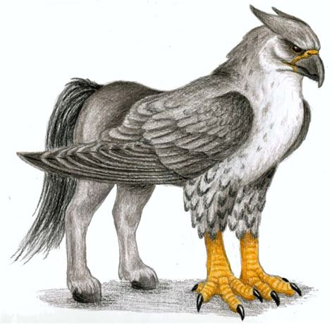 mythical creatures images hippogriff wallpaper and