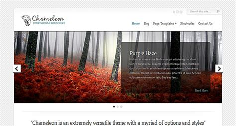 theme wordpress with slider free chameleon wordpress theme