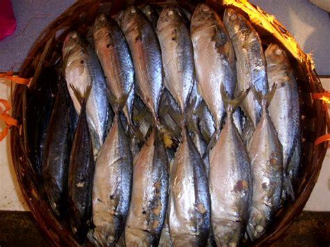 ikan rebuslengat ikan rebuslengat