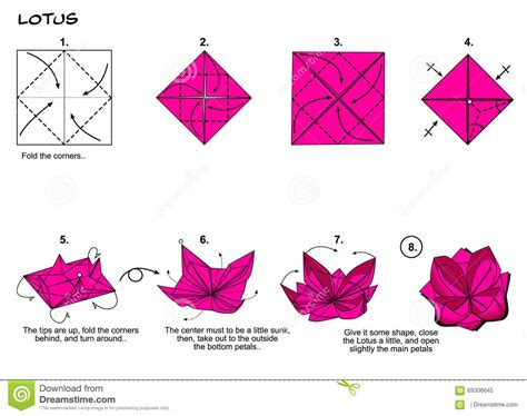 origami japanese paper folding web page origami lotus steps stock illustration image of steps