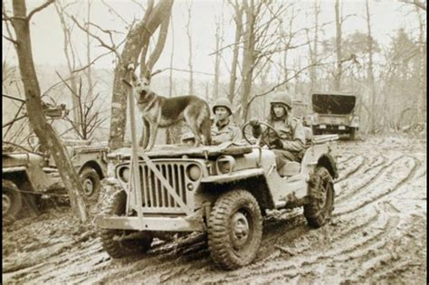 Best Item Kaos Jeep Creepers 27 best jeep ads 1950s images on jeep willys