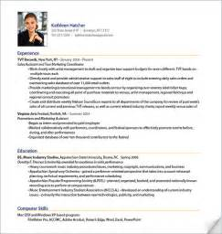 professional resume format professional resume sle from resumebear sle