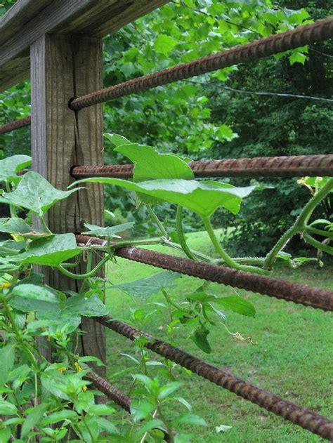 rebar garden rebar rails garden deck