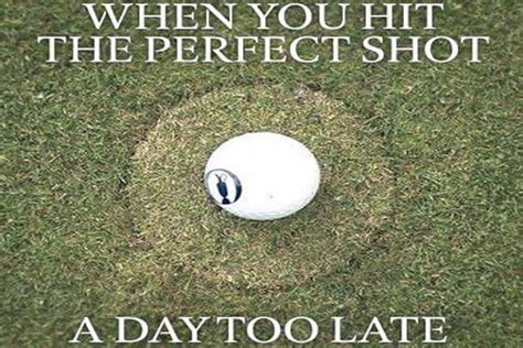 Golf Memes - 10 golf memes that exactly describe all of us golficity