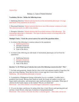 section 17 4 patterns of evolution answers patterns of evolution worksheet bluegreenish