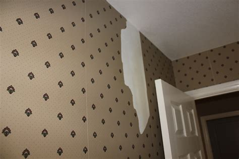 Cost To Paint Interior Walls by Lovely Wallpaper Or Paint Walls 96 For Cost To Paint
