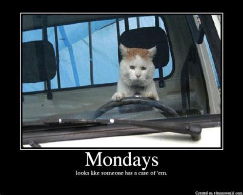Case Of The Mondays Meme - cornflakes case of the mondays corn nation
