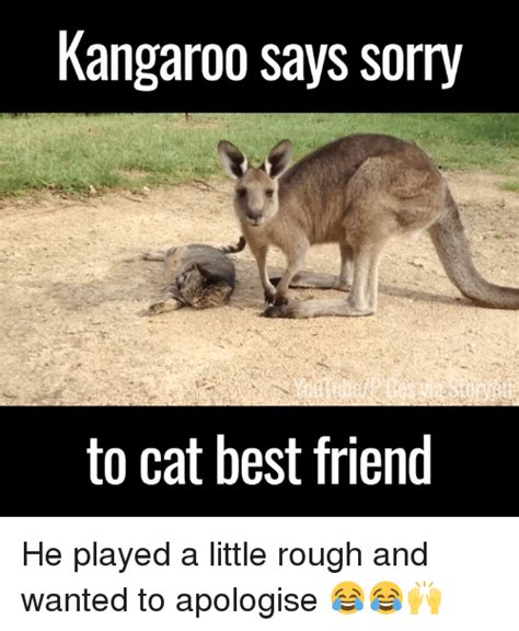 Kangaroo Meme - 25 best memes about kangaroo and dank kangaroo and dank
