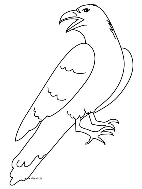 Coloring Pictures Of The Ravens Symbol Coloring Pages Ravens Coloring Pages