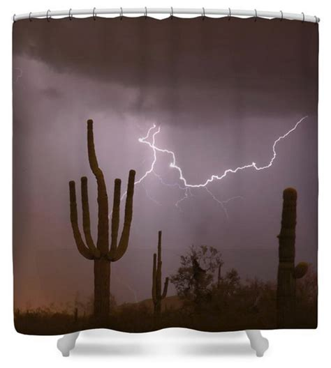 Showering During Lightning by Saguaro Southwest Desert Lightning Air Strike Amazing Nature Landscape Photography