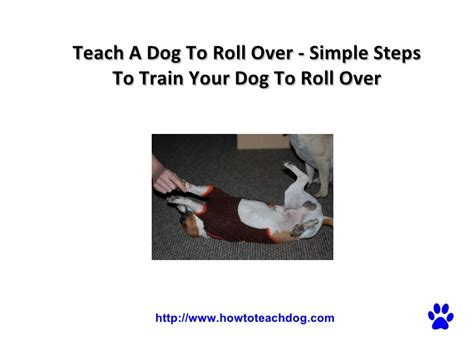 teach to roll oversimple d 233 finition what is
