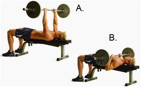 bench press range of motion fitness rehberi biceps triceps kol antrenmanı