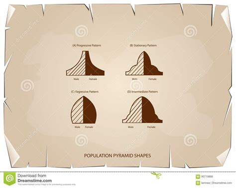 How To Make A Population Pyramid On Paper - four types of population pyramids on paper background