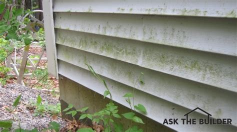 how to clean siding on house mildew how to clean exterior siding ask the builderask the builder