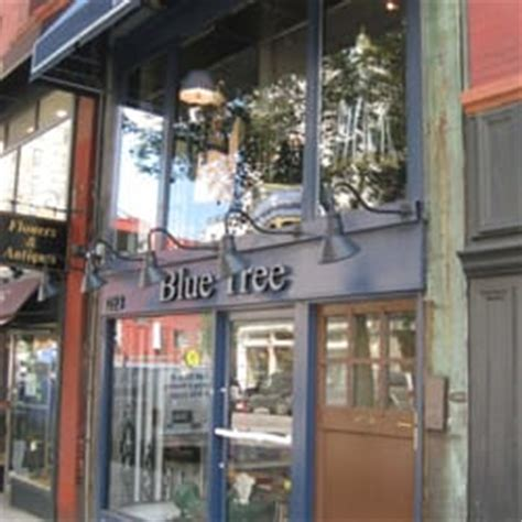 blue tree boutique new york blue tree blue tree new york ny united states