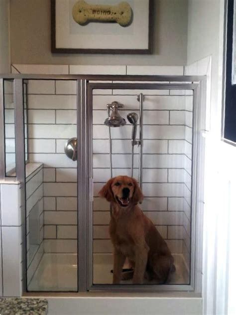best dog house in the world best 25 dog room decor ideas on pinterest dog love dog