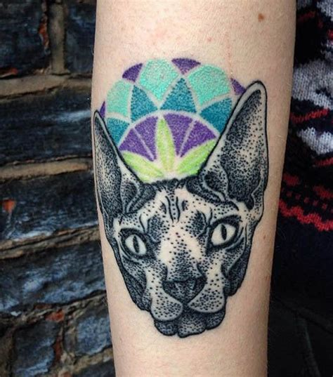 tattoo cat dots great cat pictures part 7 tattooimages biz