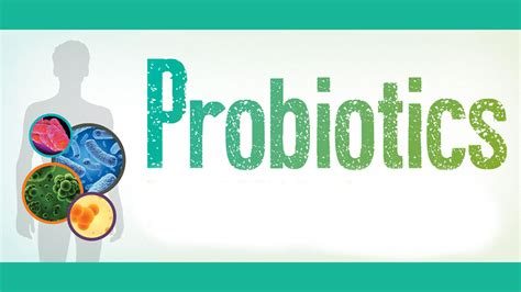 what are what are probiotics insiders health