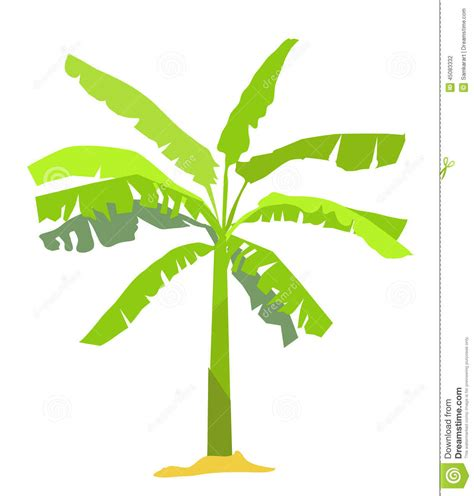 baum cycles paintings plant clipart banana tree pencil and in color plant