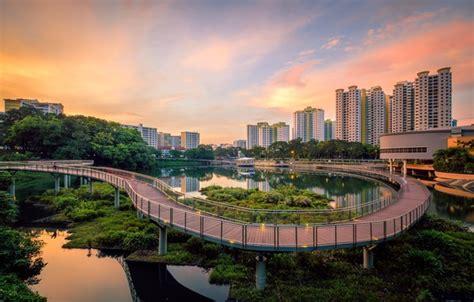 wallpaper bridge  city lake singapore singapore