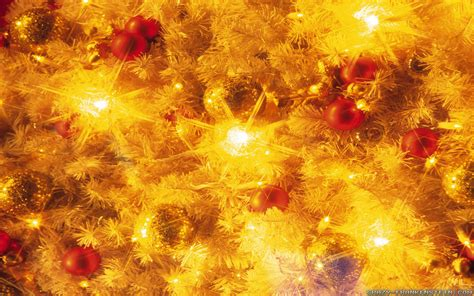 yellow christmas lights notmad