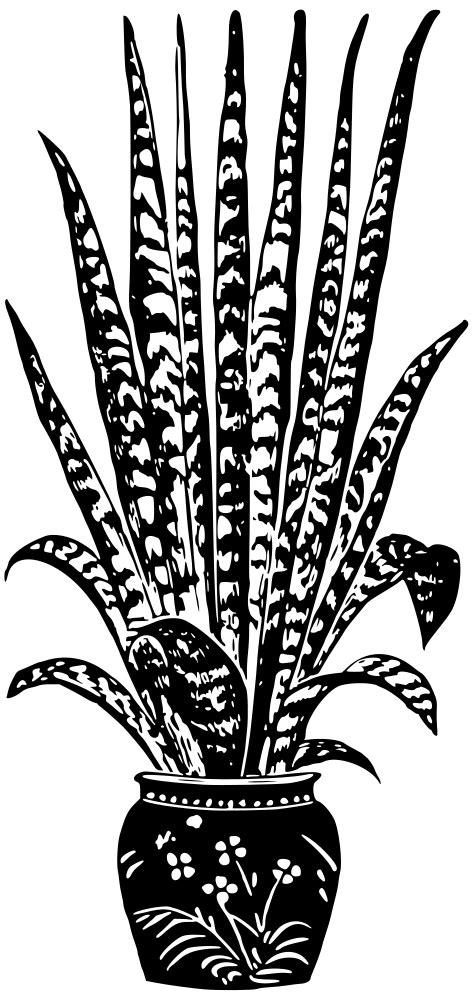 OnlineLabels Clip Art - Potted Plant 7