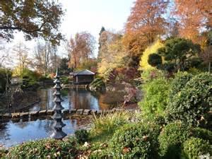japanische garten kaiserslautern bonsai gemeinschaft zur kirschbl 252 te in den japanischen