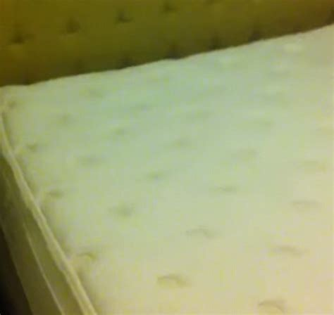 astor on the park bed bugs manhattan s astor on the park hotel video shows mattress crawling with bed bugs