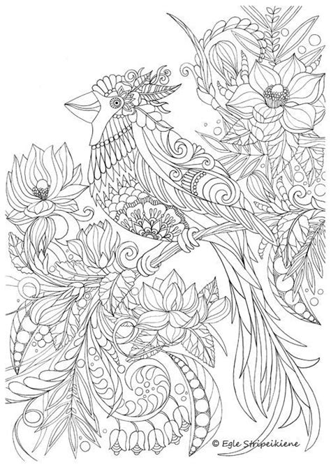 coloriage zen bird coloring pages coloring pages adult
