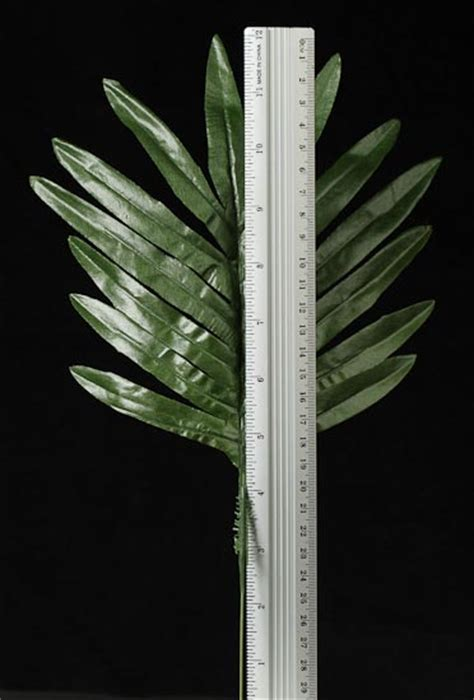 Artificial Silk Emerald Green 12 quot artificial green silk emerald fern leaf stems 12 pcs