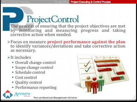 explain execution process of net application project management in indonesia module 04