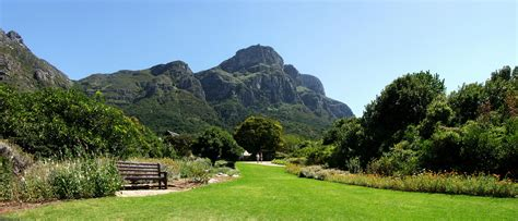 Kirstenbosch Garden Guided Walks Botanical Gardens Cape Town