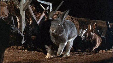 film giant rabbit monster island news the 100 greatest monsters from movies