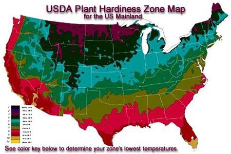 Gardenia Zone 6 Gardening In Zone 6 Gettin Fresh