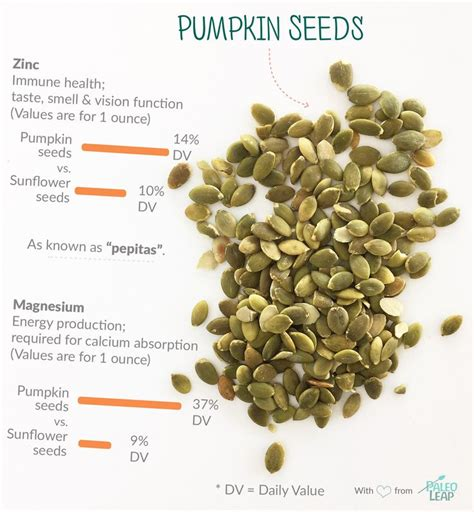 healthy fats seeds 25 best images about paleo foods on sprinkles