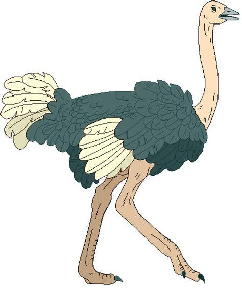 ostrich clipart ostrich clip cliparts