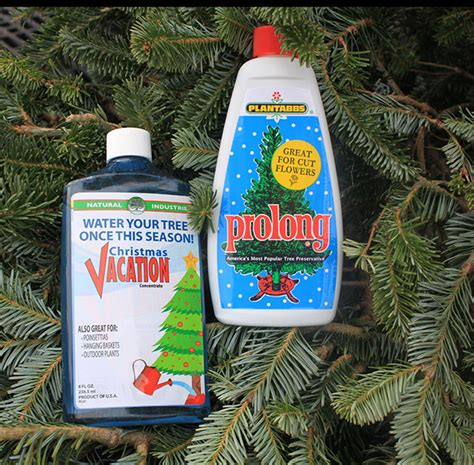 catchy collections of christmas tree preservative solution