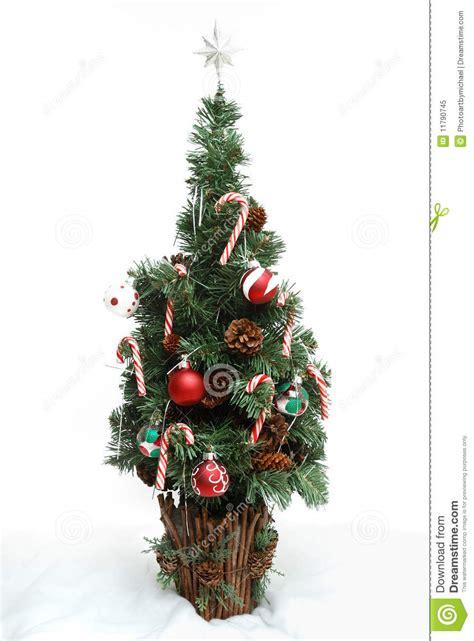 no christmas tree this year tree no 3 royalty free stock photo image 11790745