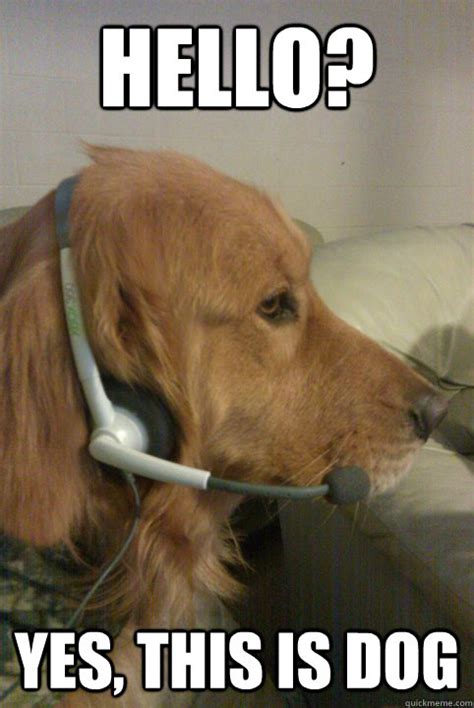 Yes This Is Dog Meme - hello yes this is dog xbox live dog quickmeme