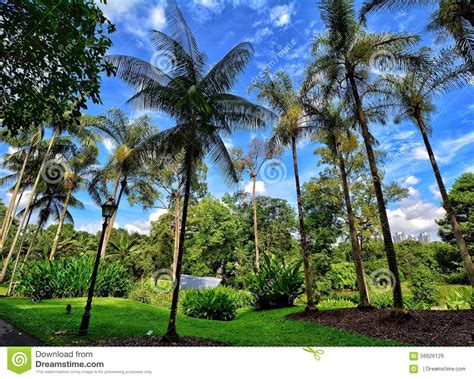 singapore botanic gardens marina bay singapore botanic gardens marina bay singapore stock