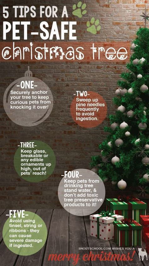 5 tips for a pet safe christmas tree get smart pets