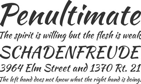 the script download free font kaushan script by impallari type font squirrel