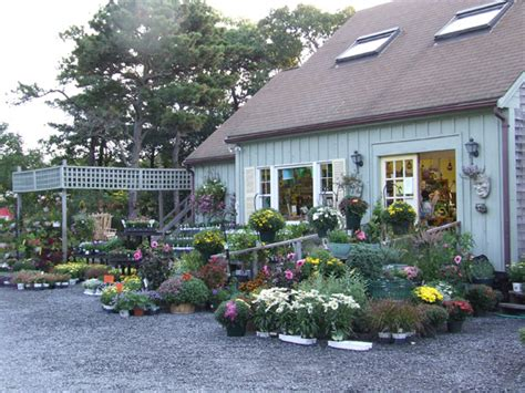 Garden Center Nursery Garden Center Pine Tree Nursery And Landscaping