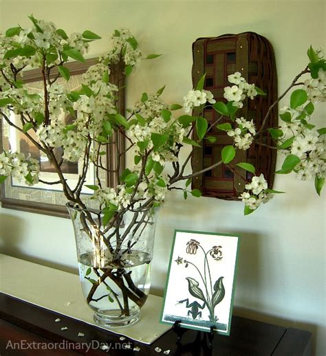 Vase Arrangements Branches by Decorating With Flowering Pear Branches Plus Easy