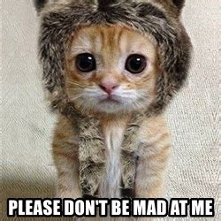 Dont Be Mad Meme - please don t be mad at me cute catty meme generator