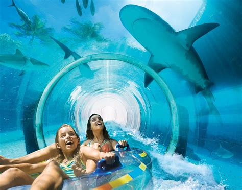 Liquid Go The Day 8 stunning reasons to visit atlantis bahamas best family