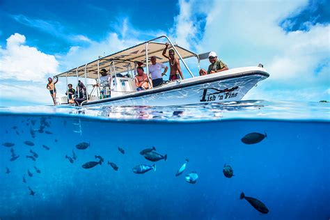 palau dive resorts fish n fins palau micronesia scuba diving packages