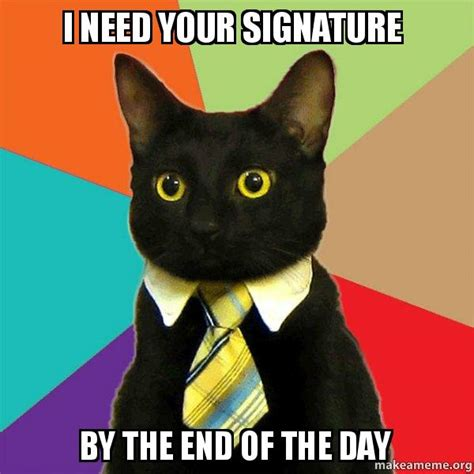 I Need Memes - i need your signature by the end of the day business cat